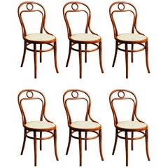 Thonet No. 31 Chairs