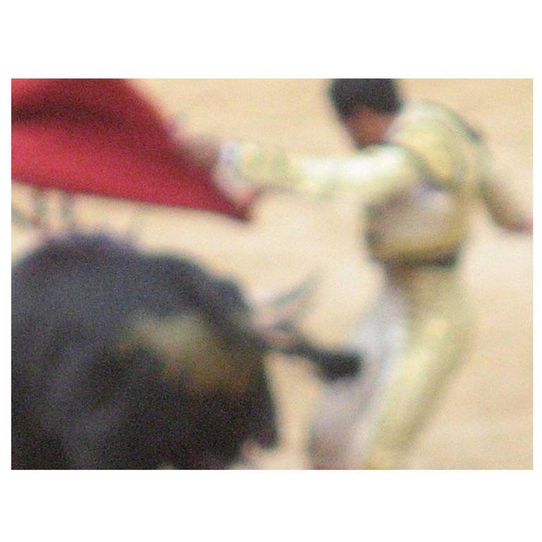 Bullfight Photograph No. 4 by Michael Stuetz