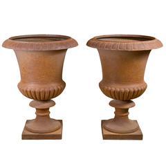 Spectacular Pair of Iron Medicis Garden Vases, 19th Century