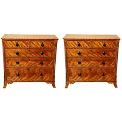 Pair of English Regency Satin Birch Chests