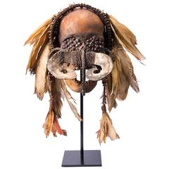 Asmat Ancestor Skull, Provenance, Ex Collection Gallery A. Cical, Paris,