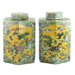 Pair of 20th Century Chinese Kangxi Style Hexagonal Shaped Lidded Jars