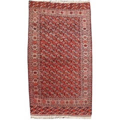 Antique Turkman Bukhara Main Carpet / Rug