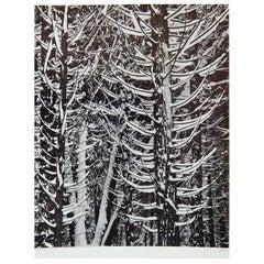 "Ansel Adams Original Signed Gelatin Silver Print ""Forest Detail, Winter"""