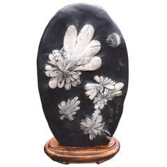 Chrysanthemum Flower Viewing Stone Signed Specimen from Chinese Artisan