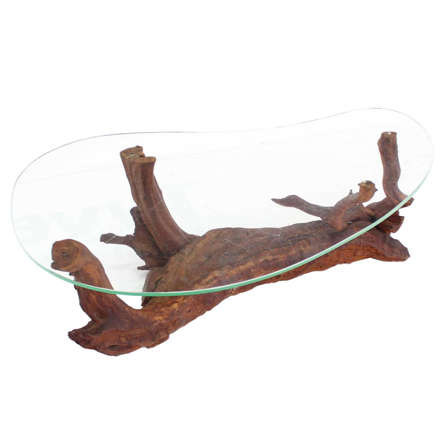 Biomorphic Kidney Shape Glass Top Drift Wood Base Coffee Table At 1stdibs