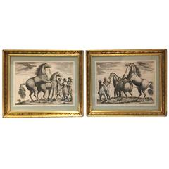 18th Century French or German Engravings of Thoroughbred Horses