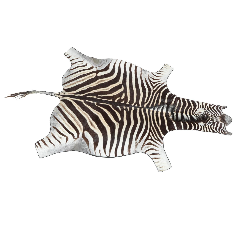 Zebra Rug Los Angeles: Zebra, Rug, Vintage For Sale At 1stdibs