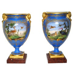 Pair of Paris Porcelain Ornithological Bronze-Mounted Vases