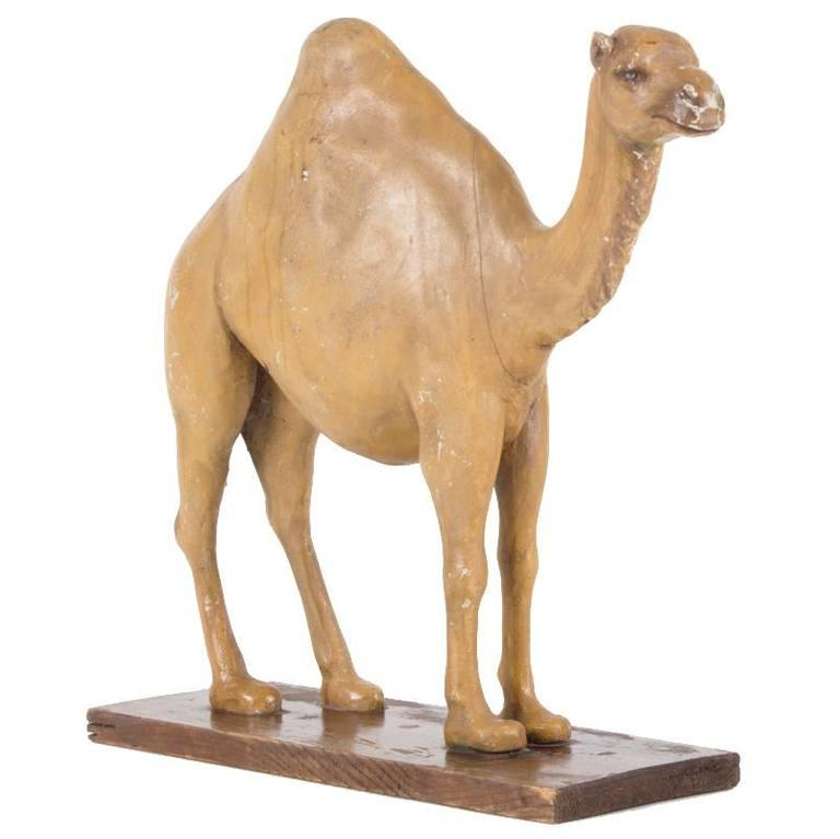 19th Century Camel or Dromedary Sculpture