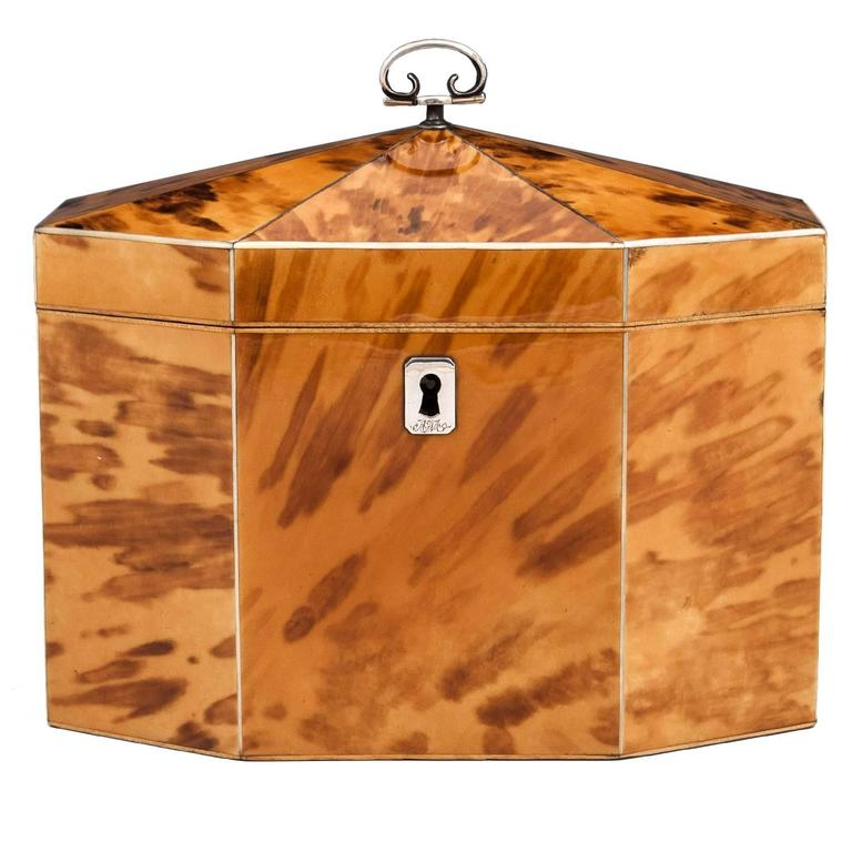 Georgian Blonde Tortoiseshell Tea Caddy For Sale