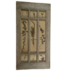 Herbiers Framed in Antique Window Frame