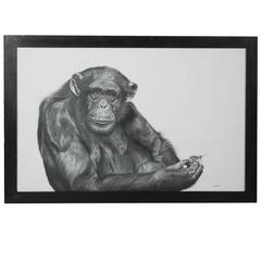 Chimpanzee and Grasshopper Graphite Drawing by François Gruson, 2011