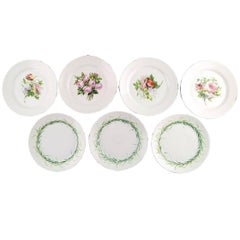 Seven Antique B&G Bing & Grondahl Plates Decorated with Flowers, circa 1870