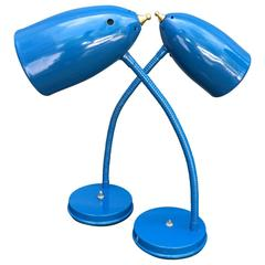 Pair of Goose Neck Table Lamps