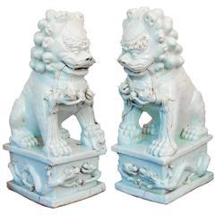Monumental Pair of Glazed White Foo Dogs