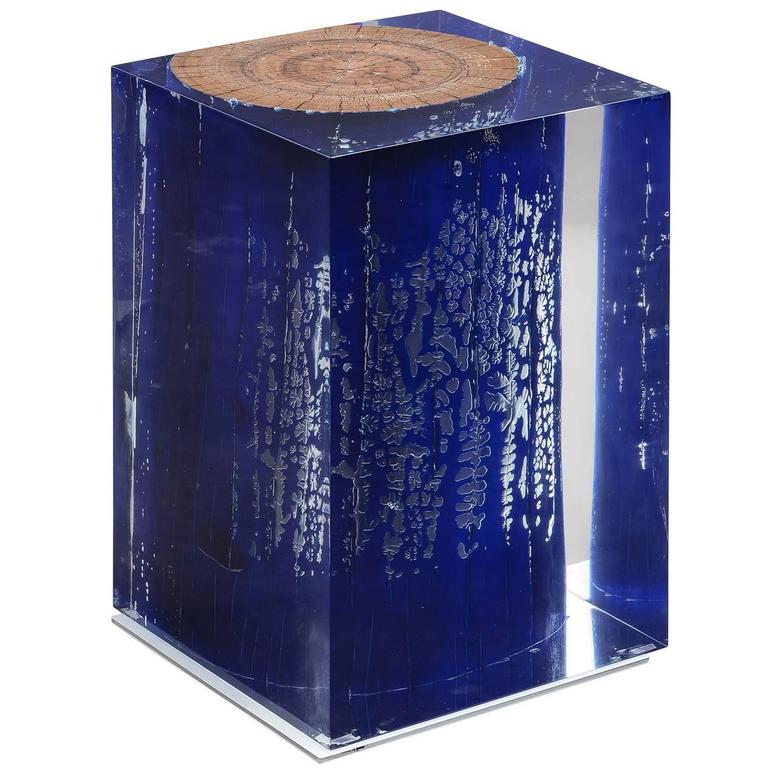 Blue Trunk in Acrylic Side Table 1