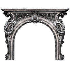 Ornate 19th Century French Cast Iron Fireplace