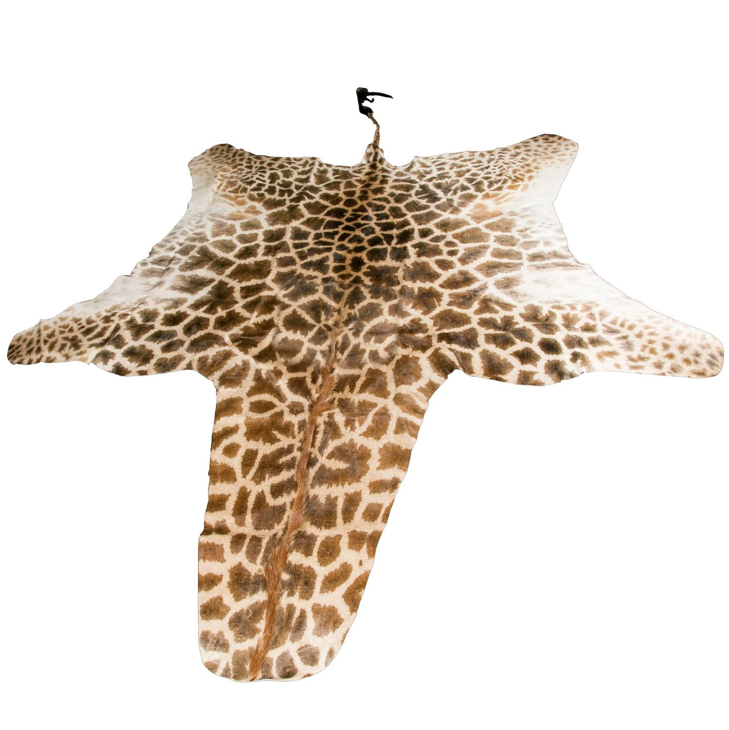 - Authentic And Beautiful African Giraffe Skin Rug For Sale At 1stdibs