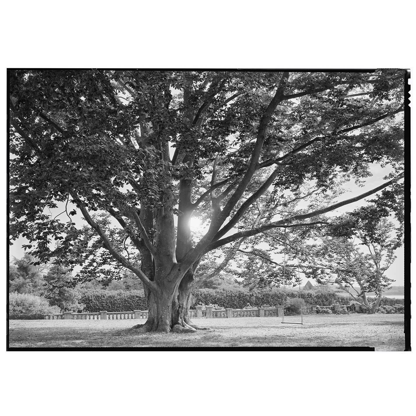 Beautiful black and white framed photograph by charles baker for sale at 1stdibs