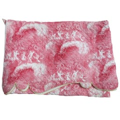 19th Century Quilted Toile Coverlet