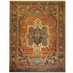 Antique Persian Rugs, Serapi Carpet from Heriz