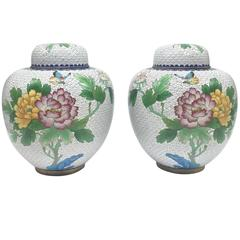 Pair of Large Cloisonné Ginger Jars