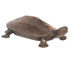 Early 20th Century Bronze Turtle