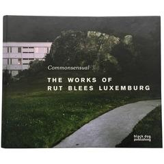 Rut Blees Luxemburg – Commonsensual, The Works of Rut Blees Luxembourg Book