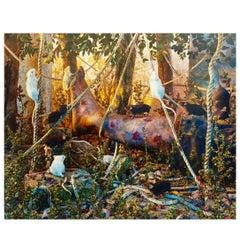 Gregory Crewdson 1990s Photograph Natural Wonder Series