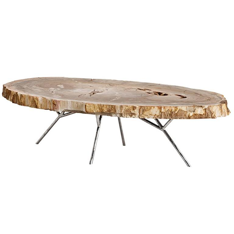 Stoned Petrified Wood Coffee Table On Stainless Steel Base For