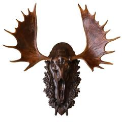 European Style Carved Wooden Moose Skull Mount with Shed Antlers