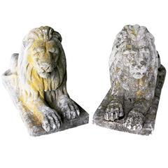 Regal Stone Lions