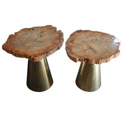 Pair of Coffee Tables, Gold Brass and Marble Top 'Fossilized Wood', circa 2010