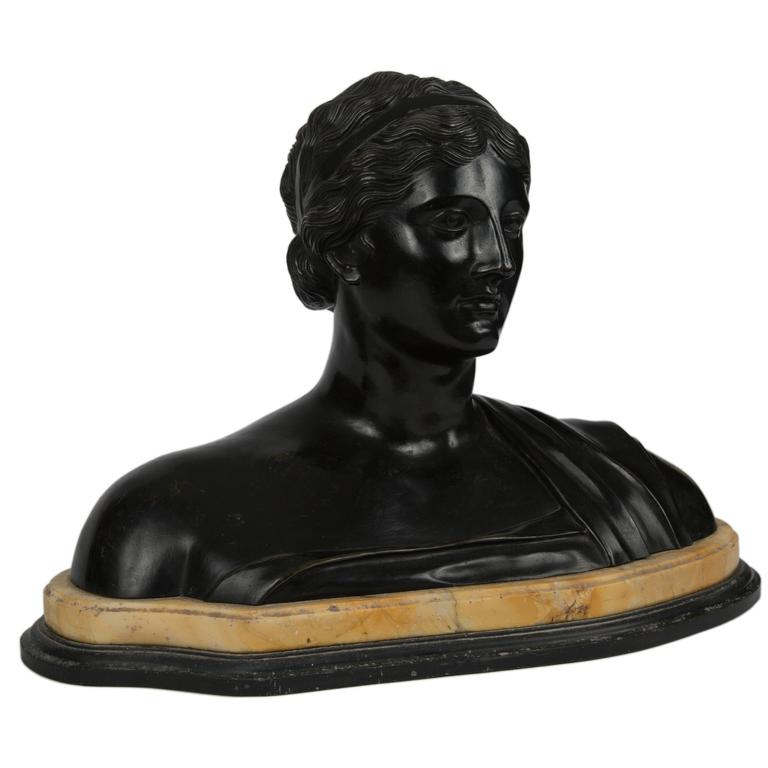 19th Century Patinated Bronze Portrait Bust of a Classical Woman For Sale