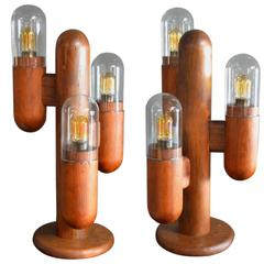 Pair of Wood Cactus Lamps with Glass Globes