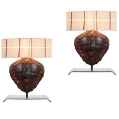 Pair of Genuine Tortoiseshell Table Lamps on Custom-Made Stands