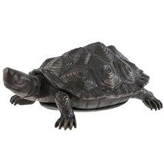 Tortoise Sculpture in Bronze Finish Highlight