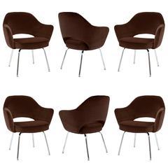 Saarinen Executive Armchairs in Espresso Brown Velvet, Set of Six