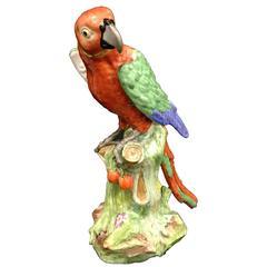 19th Century Samson Parrot