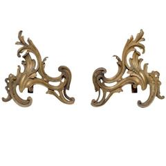 Antique French Louis XVI Bronze Chenet Andiron Pair from a Normandy Chateau