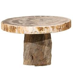 A Splendid Live-Edge Petrified Wood Pedestal Coffee Table