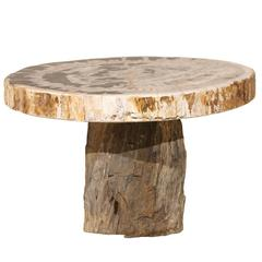 Petrified Wood Coffee Table with Round Top and Beige and Black Colors