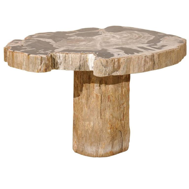 Natural Petrified Wood Coffee, Drink or Side Table in Black, White and Grey