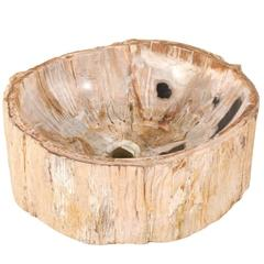 Lovely Petrified Wood Sink with Round Shape in Tan, Beige, Black and Grey Color