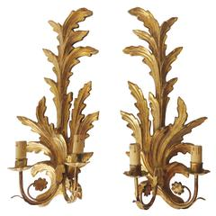 Pair of Giltwood Sconces