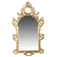 French Louis XV Style Carved Giltwood Wall Mirror, 20th Century
