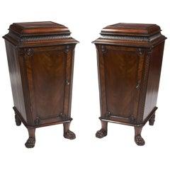 19th Century Regency Pair of Mahogany Pedestal Cabinets