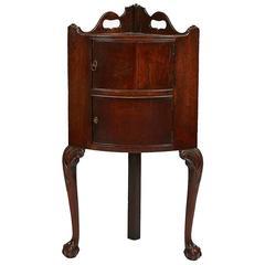 Early 19th Century Regency Irish Mahogany Corner Cabinet