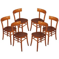 Italian Mid-Century Modern Six Chairs in wood of beech,  by I.S.A. Bergamo